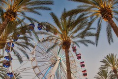 California coconut trees color - Credit to https://homegets.com/ (davidstewartgets) Tags: california coconut trees color daylight ferris wheel festival fun irvine spectrum landmark leisure low angle shot night outdoors palm sky summer travel tropical