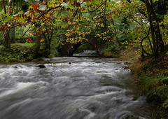 Exmoor - Autumn (Robin M Morrison) Tags: exmoor autumn colour long exposure horner wood river water bridge