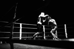 37641 - Dodge (Diego Rosato) Tags: dodge schivata pugno punch boxe boxelatina pugilato boxing ring match incontro bianconero blackwhite nikon d700 2470mm rawtherapee tamron