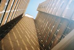 (homesickATLien) Tags: 35mm film art kodak expired mjuiii olympus melbourne victoria australia housing commission apartment collingwood light urban