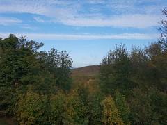 Forested hills of Hamershus. (Thomsen-Jones) Tags: forested hills hamershus