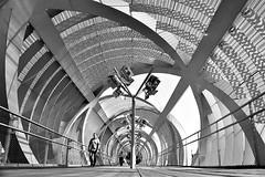 Paseo a orillas del río (Osruha) Tags: madrid españa espanya spain puentearganzuela puente pont bridge madridrío parque parc park pasarela pasarella runway blancoynegro blancinegre blackandwhite bw bn bnw nikon nikonistas nikond750 d750