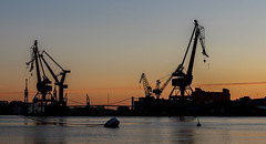 #cranelife (S. Josuason) Tags: sweden sverige göteborg hisingen