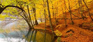 Yedigöllerde sonbahar(Autumn in Yedigöller)