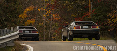 IMG_7566_result (ferrariartist) Tags: delorean gullwing automobiles automotive automobile 80s stainless car sportscar irish fall autumn ferrariartist