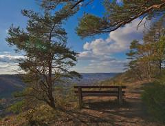 Bench (roland.schuhmann) Tags: nature city citynature cityview cloud clouds tree trees outdoors bench color landscape light sun bluesky nikon d750 view