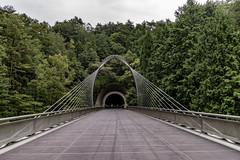 AGQ-20180927-0007 (AGQue) Tags: 2018 asia autumn fall gmt0900tokyostandardtimezone japan koka september shigaprefecture travelphotography bridge museum suspensionbridge tunnel vacationing kokashi jp