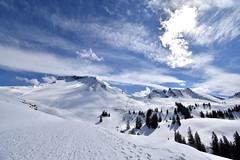 (donna.quijote...) Tags: swiss schweiz urlaub vacancy travel bodensee titlis pilatus gebirge mountains ice snow schnee clacier gletscher vierwaldstädtersee töss alpen alpes rhein rheinfall