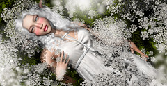 Narniell (meriluu17) Tags: lode insol sin sintiklia doll fairy fae elf elven elves white flower flowers nature bride innocent dolly pixie cute sweet people portrait flora