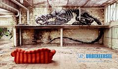 Usine Skeleton #urbex #meets #art #roa #klaasvdlinden #streetart #photography #urban (UrbexEersel | Abandoned & Forgotten Places) Tags: urbex meets art roa klaasvdlinden streetart photography urban