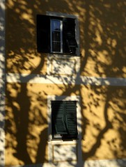 ombre autunnali (fotomie2009) Tags: autumn autunno warm colours italy italia savona santuario facciata façade window finestra perslane shadows ombre ombra platano trees albero equinox equinozio dautunno autumnal