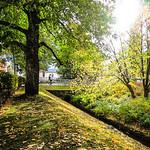 autumn look of a park in Kuopio thumbnail