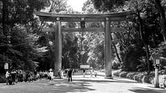 Tokyo (drasphotography) Tags: tokyo tokio shrine gate monochrome monochromatic blackandwhite bw schwarzweis sw bianconero bn drasphotography nikkor2470mmf28 travel travelphotography d810 reisefotografie people