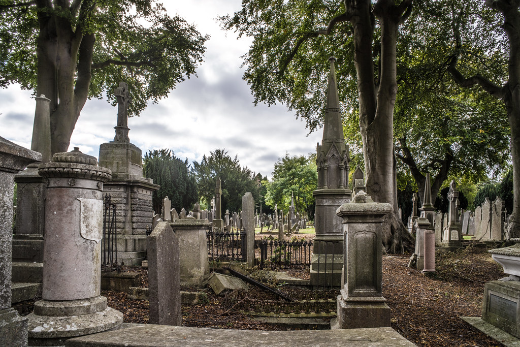 SEPTEMBER 2018 VISIT TO GLASNEVIN CEMETERY [ I USED A BATIS 25mm LENS AND I EXPERIMENTED WITH CAPTURE ONE]-144824