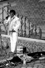 Elvis is alive (Von Noorden) Tags: cultur city blackwhite schwarzundweiss hamburg hamburger germany hafencity habourcity dock noiretblanc black white blackandwhite bw sw schwarzweiss topv schwarz weiss weis schwarzweis monochrome monotone hansestadt hanseatic hanse stpauli grasbrook deutschland elbe river citys town street dark grey sightseeing industry foto copplestone entertain elvis presley king rock roll punk imitator impersonator mimic copy doppelgänger doppelganger double lookalike sunglasses wig shock trousers glam glitter streetart streetartist artist artiste rockabilly blues music musican singer