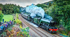 The Flying Scotsman In Cornwall. (john lunt) Tags: railway steam locomotive engine flying scotsman train smoke rail line main cornwall english british engineering 60103 famous transport transportation autumnal colour color black green trees grass bracken spectators crowd spotters enthusiasts vintage express old beautiful majestic horizontal landscape johnlunt john lunt hdr tone mapped sony alpha a7r2 zeiss 55mmf18 prime lens five harry potter