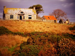 steading 3 (Saf37y) Tags: caithness steading old scotland stone farm farmhouse