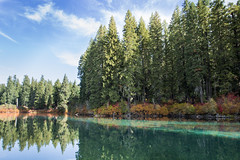 Fall color Clear Lake, Oregon (Linn County) (icetsarina) Tags: clearlake oregon fall autumn color leaves foliage