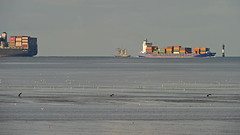 A sailing Three-Master between container giants on the river Elbe near Cuxhaven (Manfred_H.) Tags: vehicles watervehicles wasserfahrzeuge fahrzeuge schiffe segelschiffe containerschiff containercarrier ships sailingships watt mudflat waddensea