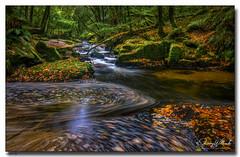 Golitha Falls (jeremy willcocks) Tags: golithafalls cornwall ukjeremywillcocksc2018fujixt3xf1024mm landscape river woods trees autunm swirl rocks england britain cornish wwwsouthwestscenesmeuk jeremywillcocks