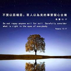 圣经金句:不要以恶报恶;众人以为美的事要留心去做 (追逐晨星) Tags: 樹 經文 夜晚 惡 海 河