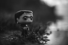 It wasn't my intent. (3rd-Rate Photography) Tags: frankenstein monster fiend flower horror universalmonsters universalmonster universal funko funkopop toy toyphotography blackandwhite bw october halloween canon 50mm 5dmarkiii florida 3rdratephotography earlware 365 portorange