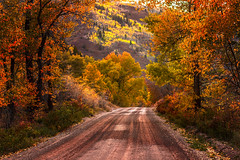 When Autumn Leaves... (miss.interpretations) Tags: memories autumn fall seasons changing changingseasons coloradoautumn grief remember cancer rachelbrokawphotography colorado paths roads sunset evening golden goldenhour 85mm canon 6d sylvan state park eagle co