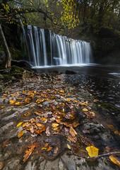 Sgwd Ddwli Uchaf (pjbranchflower) Tags: sgwd y bedol ddwli uchaf waterfalls neath autumn wales brecon beacons