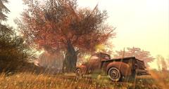 Autumn Morning (Layla Falconvale) Tags: autumn car autumnmorning sl photographer laylafalconvale