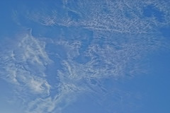 Abstract sky and clouds. (artanglerPD) Tags: abstract patterns sky blue white clouds