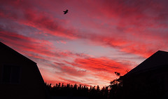 (Ivan Berk) Tags: sky sunset