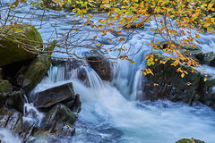 flow (scottprice16) Tags: england lakedistrict cumbria ldnp worldheritagesite stream beck greatlangdalebeck chapelstile elterwater water flow leaves autumn fall colour 2018 october rocks outdoors calm peaceful fuji fujixt1 18135mm tripod longexposure