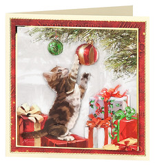 Craft Creations - Shelley179 (Craft Creations Ltd) Tags: kitten christmas greetingcard craftcreations handmade cardmaking cards craft papercraft