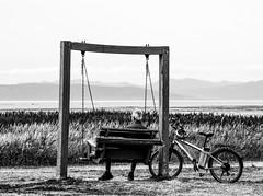 la balançoire (photosgabrielle) Tags: photosgabrielle bwphotography bw basdufleuve monochrome seascape bicycle people