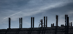 mountain biker's break (muman71) Tags: dscf3404 fuji xt2 ruhrpott haldehaniel totems kunst kunstprojekt fahrrad bottrop 2018 zeche 135mm iso200 1500sec f13 mountainbike berg