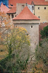DSC_0240 (coolguide.cz) Tags: prague castle pražský hrad the royal garden královská zahrada ball game hall summer palace