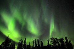 Night Flight (Katy on the Tundra) Tags: northernlights auroraborealis nightsky