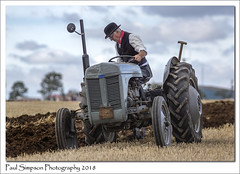 Posh Lincolnshire Farmer (Paul Simpson Photography) Tags: poshman tractor paulsimpsonphotography imagesof imageof photoof photosof northlincolnshire field farming farmer posh photosoftractors transport machine machinery plough ploughing festivaloftheplough classictractor england september2018 competition