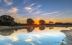 Contrail Skies (nicklucas2) Tags: landscape newforest mogshade pond reflection water tree cloud contrail
