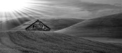 Morning Barn Infrared (Diane Michaud Lowry) Tags: sunlight beams washington