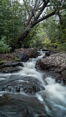 Congdon Park (Lzzy Anderson) Tags: duluth minnesota unitedstates us congdonpark northshore woods forest waterfall water river stream rock cliff tree longexposure nature hiking explore adventure wanderlust