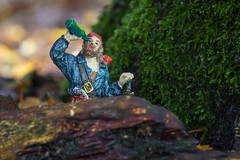 woodland pirate 1 (Mark Rigler -) Tags: captain jack sparrow sailing ship old blue sky dreadlocks pirate upton house woods forest dorset england model scale figure
