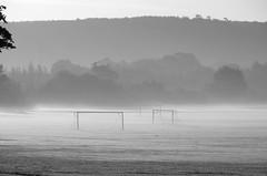 Unclear goals (Sundornvic) Tags: grey mist bw black white yellow filter morning walking countryside shadows sundorne shrewsbury shropshire contrast pentaxart