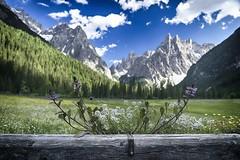 Fischleintal (Guido Havelaar) Tags: fischleintal dolomiti dolomitenhof italia dolomieten mountainview