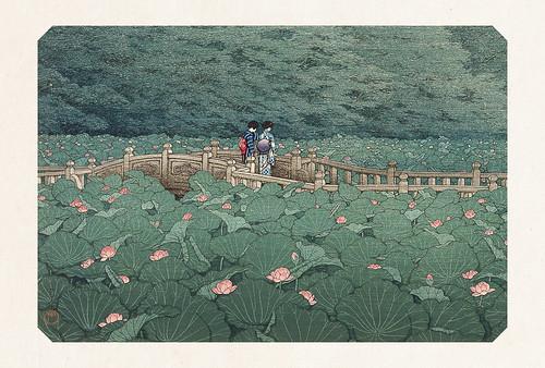 40-Carte postale // 10x15cm // Shiba