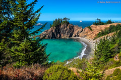 cove north of Arch Rock (Cottage Days) Tags: oregoncoasthighway oregon cove pacificocean rocks trees beach landscape