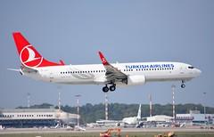 TC-JFU B737 8F2 Turkish A/L (corrydave) Tags: 29781 b737 b737800 turkish tcjfu milan malpensa