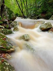 Little Stony Creek: Swollen (Shahid Durrani) Tags: little stony creek cascades pembroke virginia hurricane michael