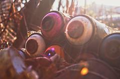 ([gegendasgrau]) Tags: spraypaint spraycans sprühdose lack trash garbage gebinde paint urban urbanlife urbandecay decay photography fotografie explore mood moody ambiance atmo atmosphere atmosphäre moodporn feeling flavour documentation dokumentation reportage prettyshot lifestyle umwelt environment wetter weather nature natureporn moodynature naturelovers ilovenature natur wildwuchs leben life bokeh bokehporn bokehlicious bokehaddicted sun sonne sunlight sunnyday light licht sunrise sonnenaufgang nrw ruhrpott ruhryork ruhrgebiet