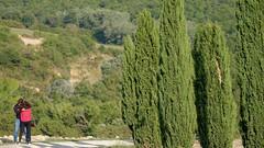 IMG_4239-2 (nitinb2) Tags: tuscany italy 2018